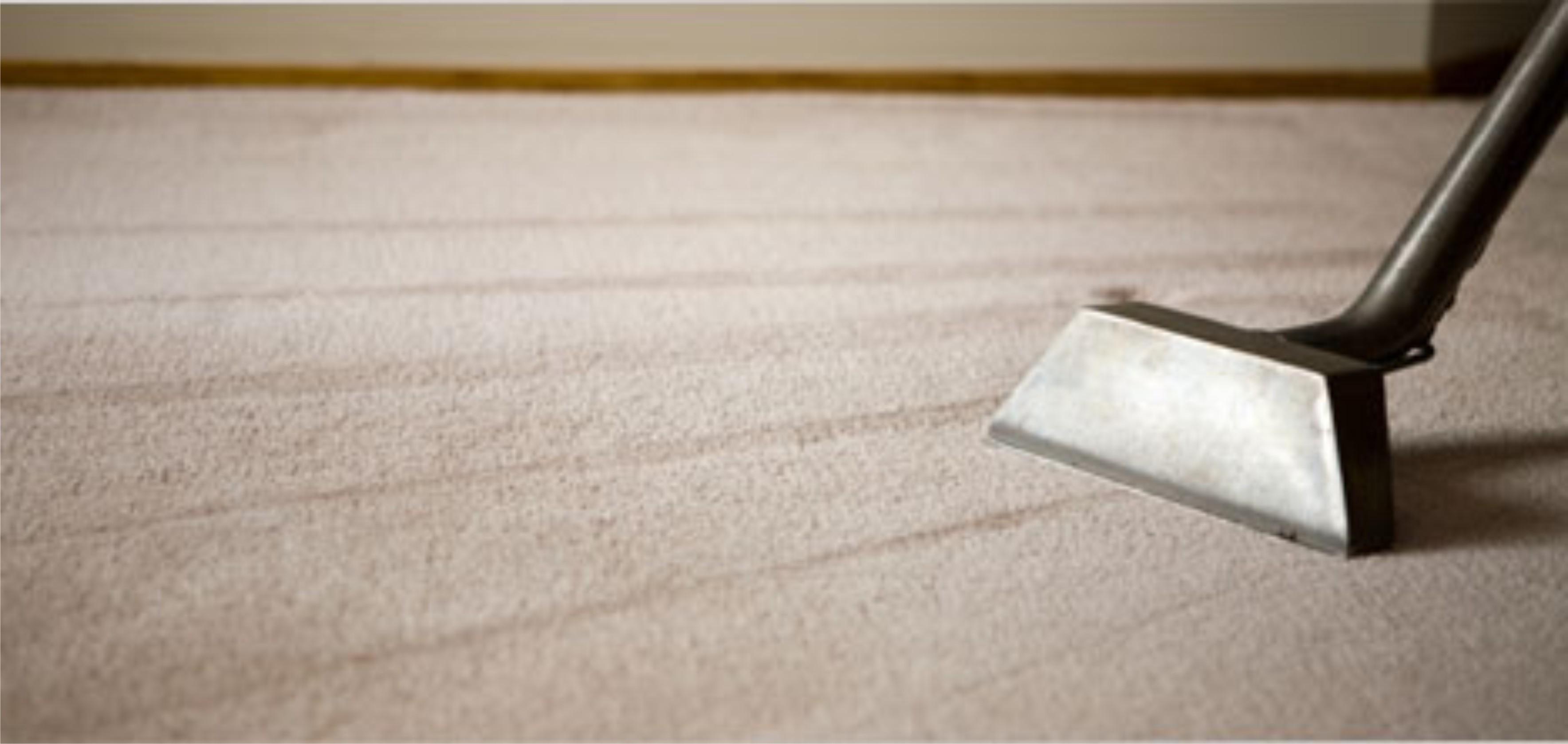 Pure clean carpet tile care clean baanklon Choice Image